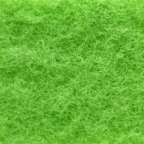 EXPOflor- Lime Green 197