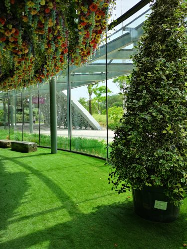 EXPOflor Gallery - Floral Fantasy – Gardens by the Bay
